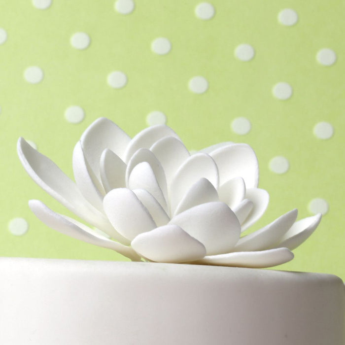 Small White Lotus Flower handmade from gumpaste perfect as a cake topper Cake decoration for cake decorating fondant cakes. Wholesale cake supply. Caljava
