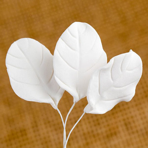 Rose Leaf - White