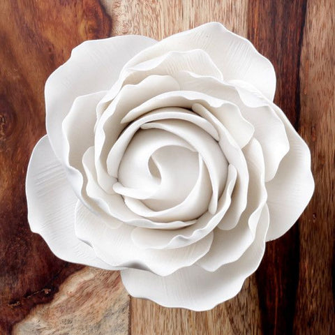 Giant Peace Rose - White