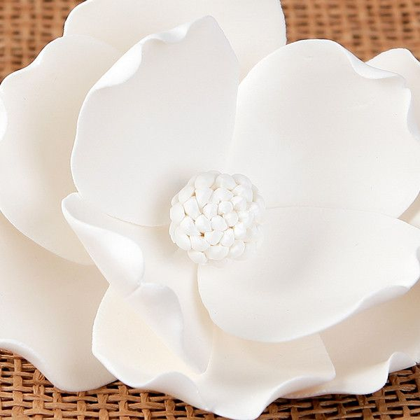 Large Magnolias - White