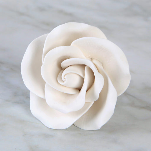 Large Tea Roses - White