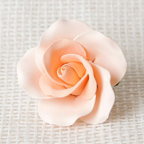 Large Tea Roses - Peach