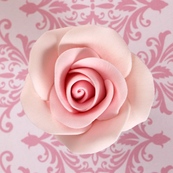 Pink Gumpaste Rose Sugarflowers cake decorations perfect for cake decorating fondant cakes & wedding cakes. Wholesale cake supply. Gumpaste flower supply.