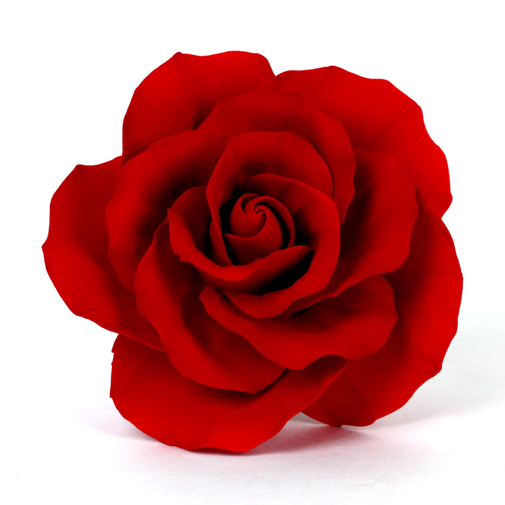 Extra Large Garden Roses - Red