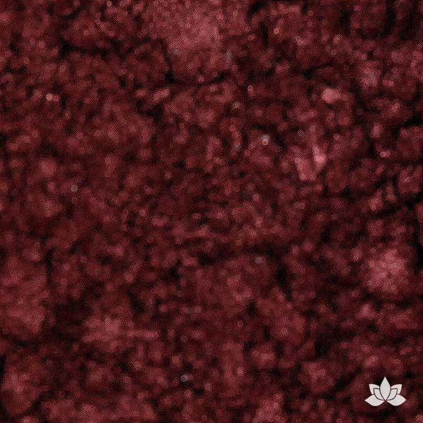 Burgundy Luster Dust colors for cake decorating fondant cakes, gumpaste sugarflowers, cake toppers, & other cake decorations. Wholesale cake supply. Bakery Supply. Merlot Lustre Dust Color.