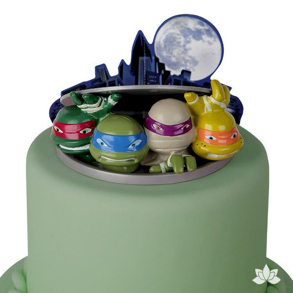 Teenage Mutant Ninja Turtles to Action Cake Decoration Set
