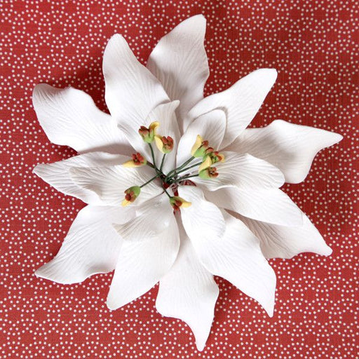 White Gumpaste Poinsettia sugarflower cake topper perfect for cake decorating rolled fondant christmas cakes and cupcakes.  Wholesale cake decorations for christmas.