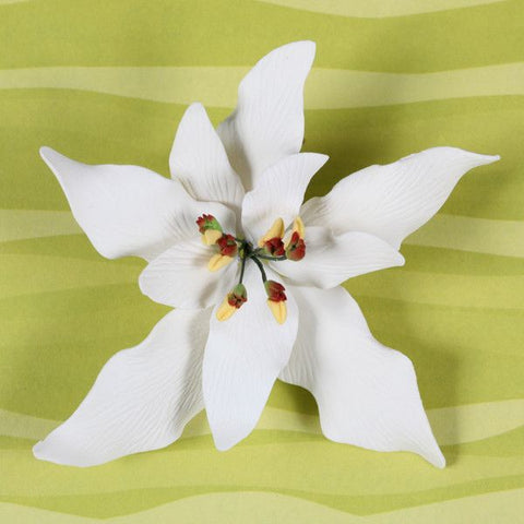 White Gumpaste Poinsettia cake topper perfect for cake decorating rolled fondant christmas cakes and cupcakes.  Wholesale cake decorations for christmas.