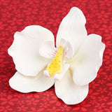 Single Moth Orchids in White are gumpaste sugarflower cake decorations perfect as cake toppers for cake decorating fondant cakes and wedding cakes. Caljava wholesale cake supply.