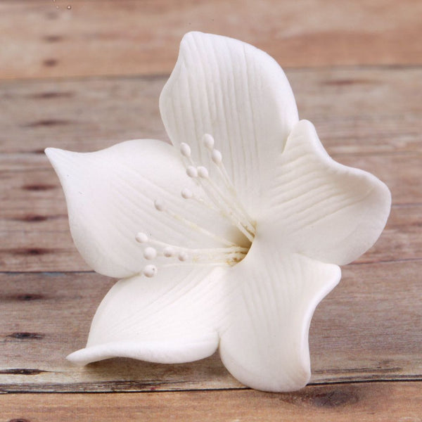 Small White Gumpaste Flower Blossoms handmade cake decoration.