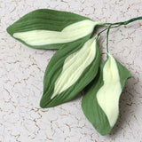 Hosta leaf sugarflower from gumpaste perfect for cake decorating fondant cakes and wedding cakes. Wholesale sugarflowers and cake supply.