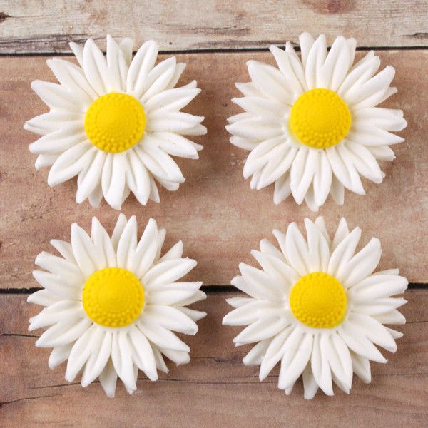 White Petite Daisy Gumpaste Sugarflower cake decorations perfect as cake toppers on fondant cakes & cupcakes.  Wholesale cake supply. Caljava