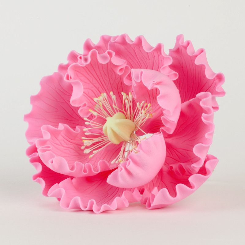 Electric Pink Gumpaste Large Peony sugarflower cake toppers perfect for cake decorating rolled fondant wedding cakes and birthday cakes.  Wholesale cake supply & sugarflowers. Caljava
