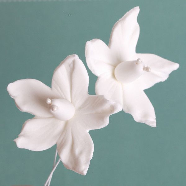 White Gumpaste Petunia sugarflower cake decorations perfect for cake decorating fondant cakes and cupcakes.  Wholesale sugarflowers. Caljava