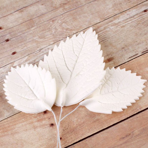 White Hydrangea Leaves (wired)