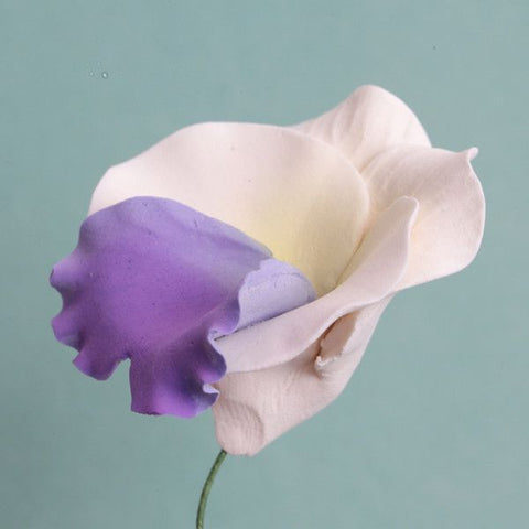 Lavender Pansies Gumpaste Sugarflower edible cake decoration perfect for adding on top of your cakes and cupcakes.