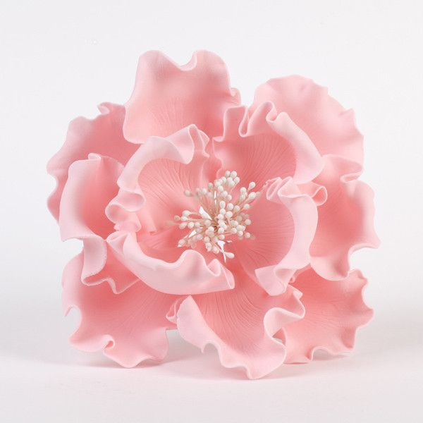 "Pink Gumpaste Extra Large Peony sugarflower cake toppers perfect for cake decorating rolled fondant wedding cakes and birthday cakes.  Wholesale sugarflowers and wholesale cake supply. Extra Large Peonies - White Extra Large 6"" Peonies - Pink. Caljava"
