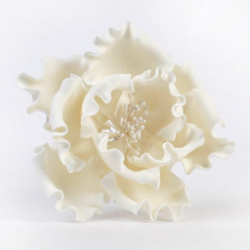 "White Gumpaste Extra Large Peony sugarflower cake toppers perfect for cake decorating rolled fondant wedding cakes and birthday cakes.  Wholesale sugarflowers and wholesale cake supply. Extra Large Peonies - White Extra Large 6"" Peonies - White. Caljava"
