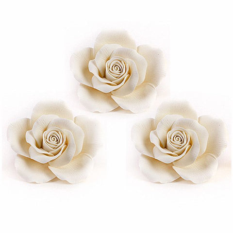 Queen Elizabeth Roses - White