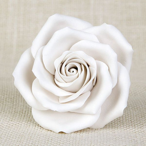 Chantilly Rose - White
