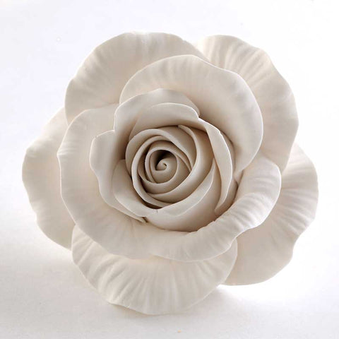 Meghan's Rose - White