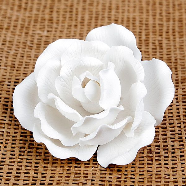 Large Full Bloom Roses - White