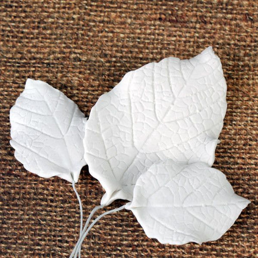 Gumpaste White Rose Leaves Sugarflowers perfect for cake decorating fondant cakes & to pair with gumpaste rose sugarflower cake decorations. Wholesale cake supply.