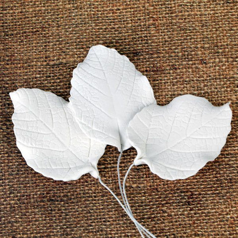 Rose Leaves - White
