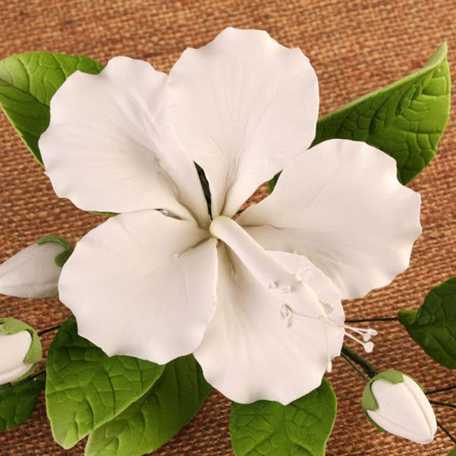 Open White Hibiscus Spray with Leaves gumpaste handmade cake decoration, cake topper.