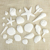 "These fun edible fondant White Sea Shells are perfect additions for any ""Under the Sea"" themed cakes."