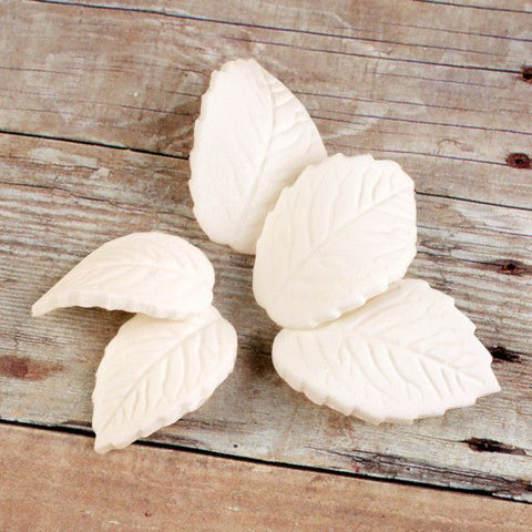 Single Rose Leaves - Ivory