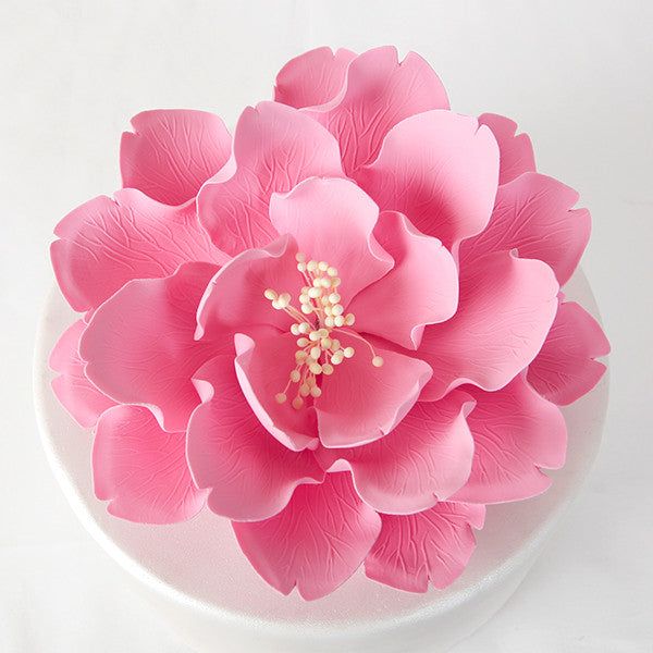 "7"" Extra Large Open Peony - Pink"