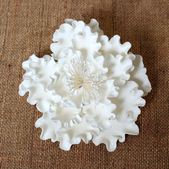 White Gumpaste Garden Peony sugarflower cake toppers perfect for cake decorating rolled fondant wedding cakes and birthday cakes.  Wholesale sugarflowers and wholesale cake supply. Garden Peonies - White.  Caljava