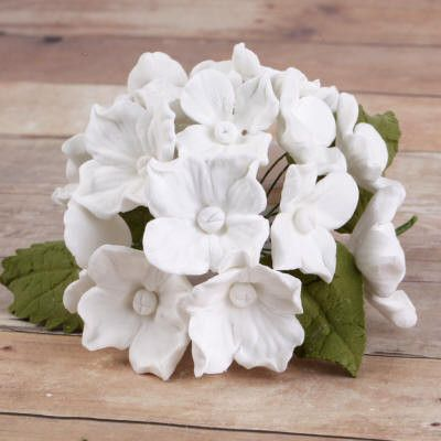 10 Bunches of Hydrangeas and Leaves - White