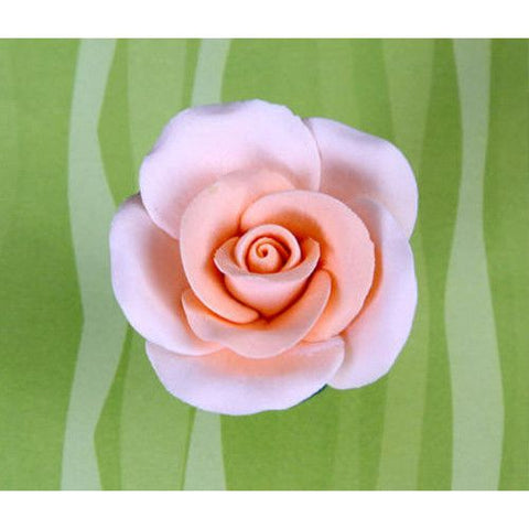 Medium Tea Roses - Peach
