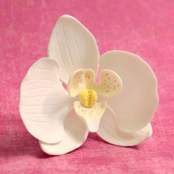 Orchid Sugar flower cake toppers great for cake decorating your own cake. Edible cake topper made from gum paste used for making your cake designs.