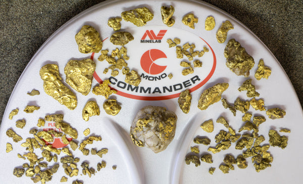 Minelab GPX 5000 commander coil with gold nuggets found by Mark, Errol Belda. Oregon, Washington, California, Nevada  gold located in Portland oregon