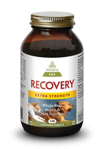 Purica Pet Recovery Extra Strength Chewable Tablets - Free Shipping - Naturally Urban Pet Food Shipping