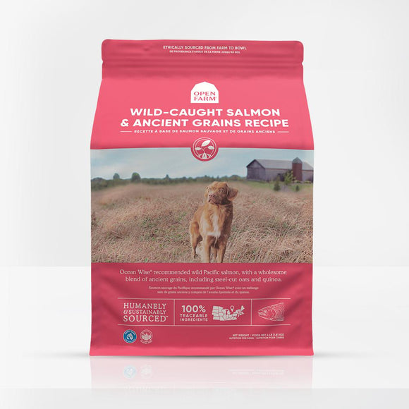 Wild-Caught Salmon & Ancient Grains Dry Dog Food