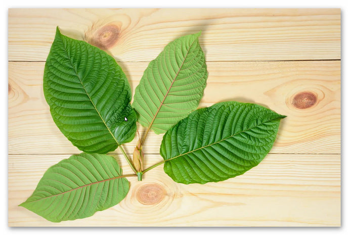 Kratom Corner - find yours here