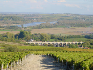 Virtual Wine tasting featuring a bike tour with Backroads in the Loire Valley  !