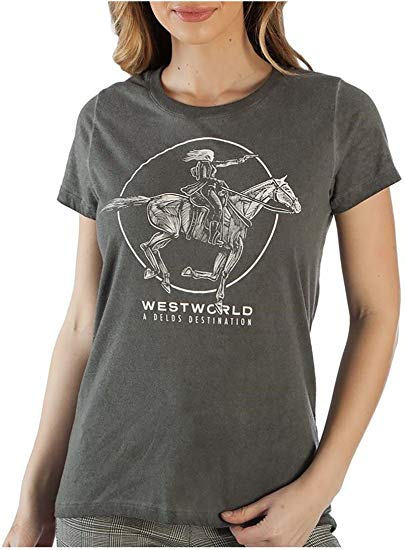 Womens Juniors Gray HBO Westworld Delos Hilo Boyfriend Tee T-Shirt