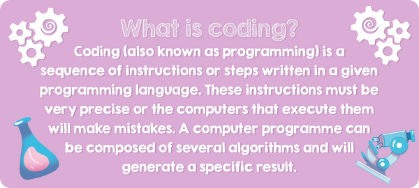 What is coding: explanation by QuestFriendz
