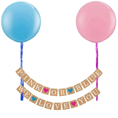 Gender Reveal Baby Shower Decorations, Pink or Blue Banner and Balloons