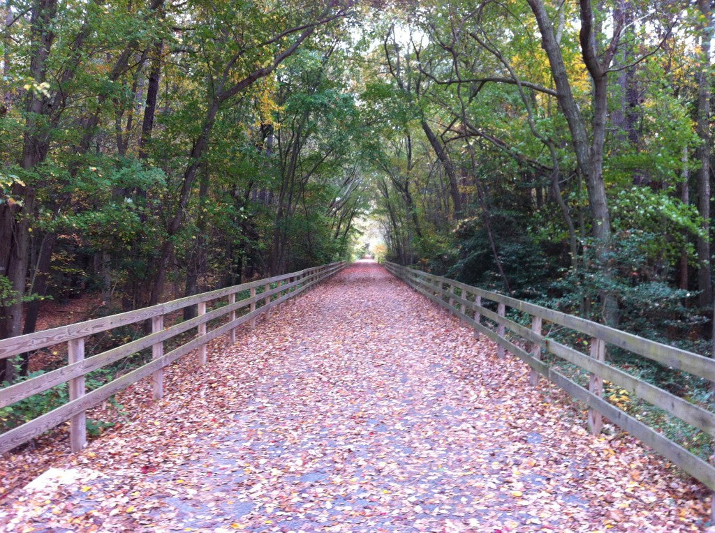 Junction and Breakwater Trail
