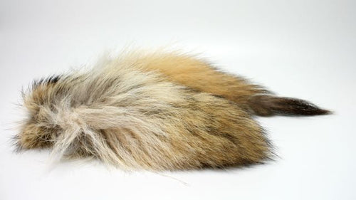 Coyote Tail, Hair For Brush Making