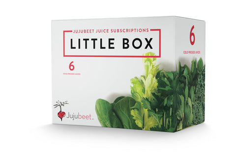 LITTLE BOX (6 Month Subscription)