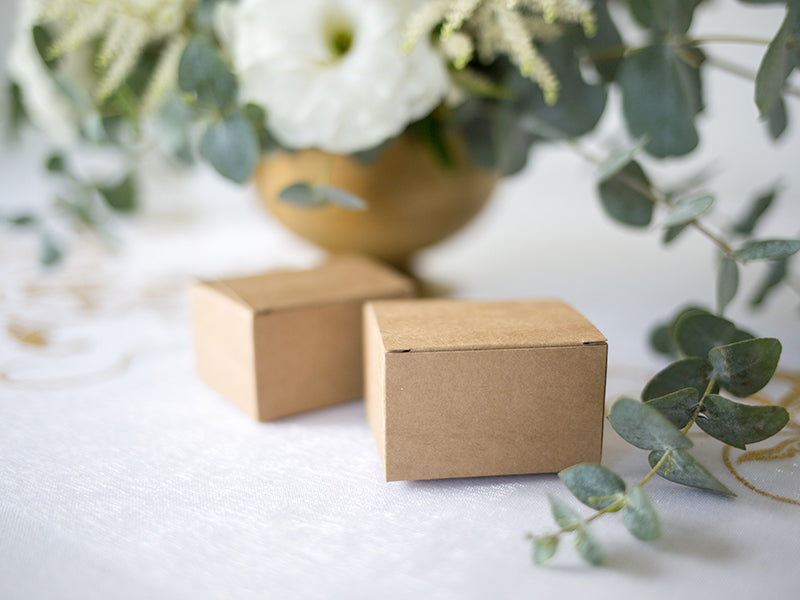 Kraft Favour Boxes (10 pack)