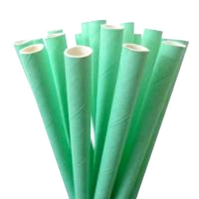 Mint Green Straws (25 pack)