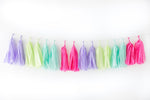 Fiesta Tassel Garland Kit